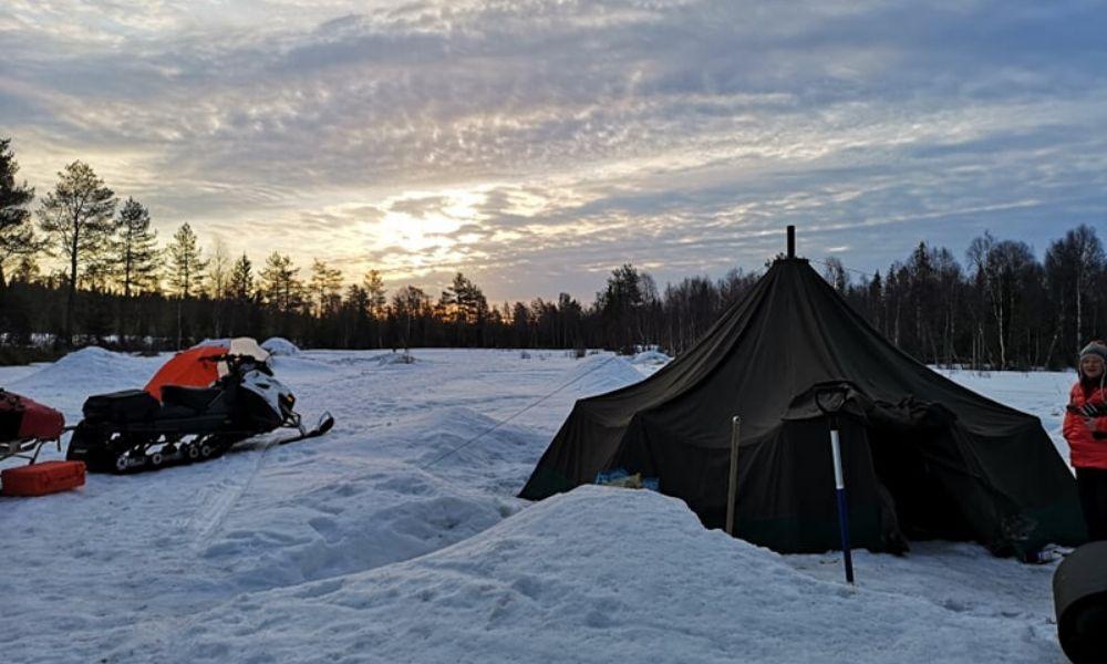 Arctic Trek