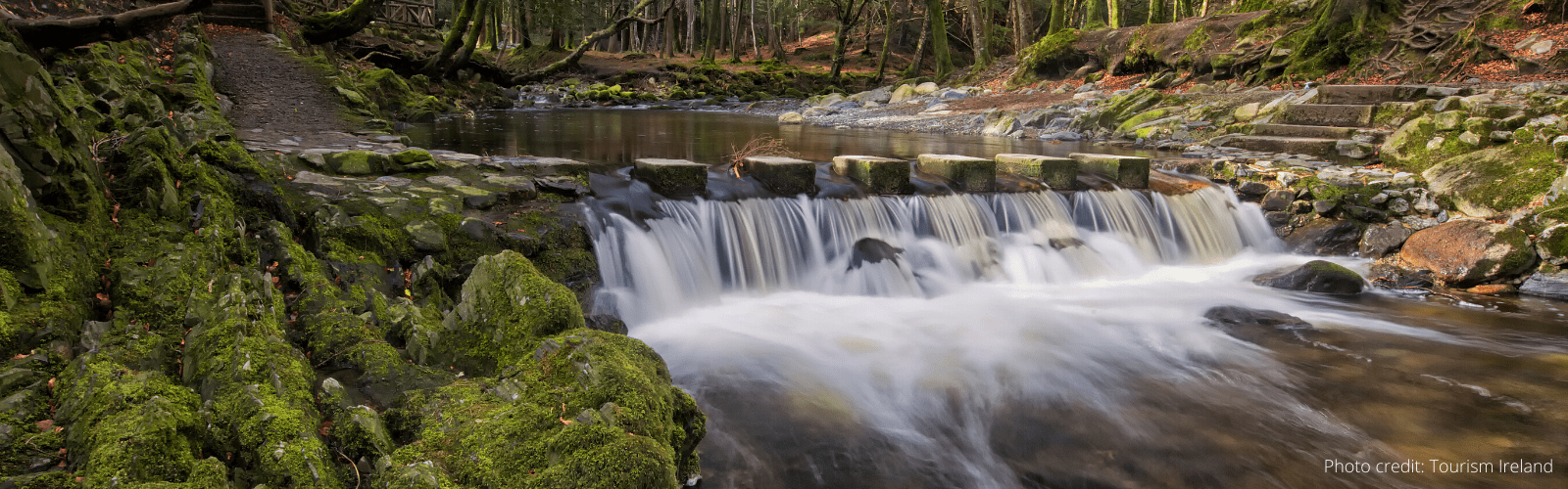 Tollymore Forest Marathon Walk – 14 November 2020
