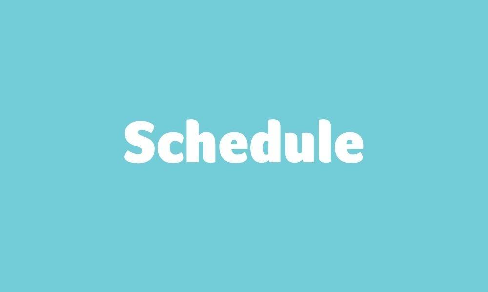 Schedule for online workshop with Mick Cooper